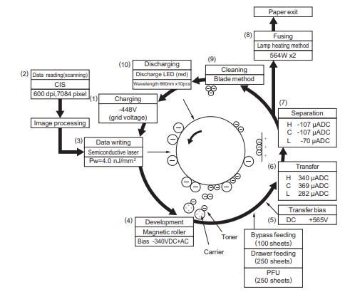 آموزش ساختار کامل همراه با تصویر کپی برداری توسط نمایندگی تعمیر دستگاه فتوکپی توشیبا